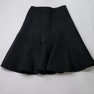 Black mesh skirt